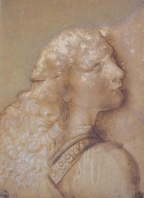 ヴェロッキオの工房(レオナルド・ダ・ヴィンチ?)「《キリストの洗礼》の天使の習作」(トリノ王立図書館蔵)