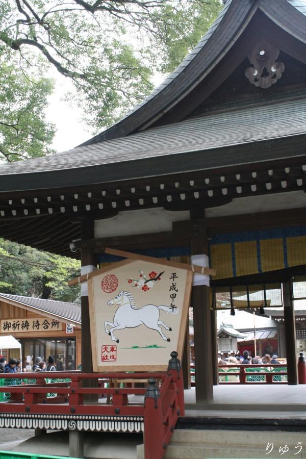大宮 氷川神社 01